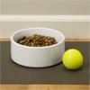 Large Pet Bowls