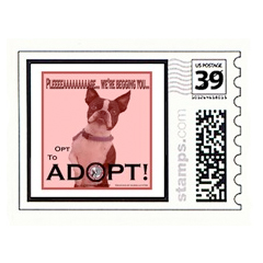 Boston Terrier Custom Postage Dog T-Shirts and gifts